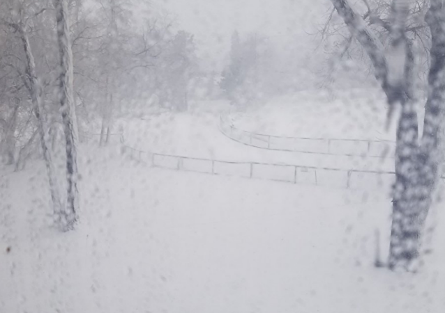 Midwest Bomb Cyclone