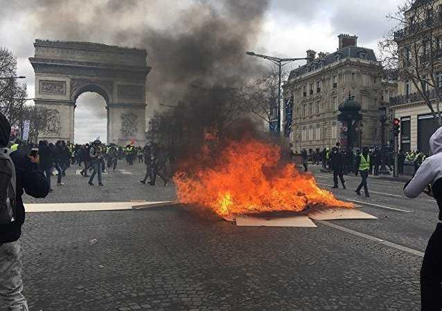 From 7,000 to 8,000 Yellow Vest Protesters Take Part in Rally in Paris
