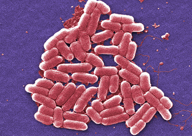 Bacteria with special resistance to antibiotics are increasingly found in the US, increasing worries that the country will soon see a superbug that cannot be treated with known medications