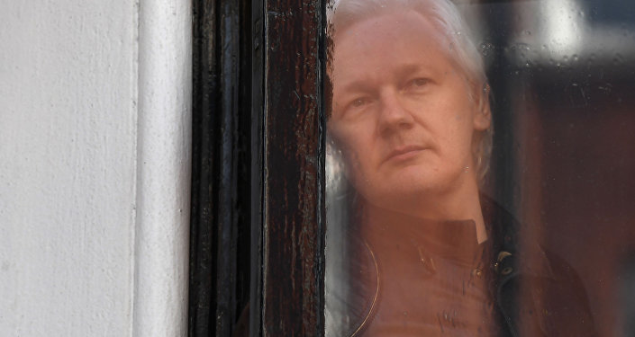 In this file photo taken on May 19, 2017, Wikileaks founder Julian Assange peers through the window prior to speaking on the balcony of the Embassy of Ecuador in London