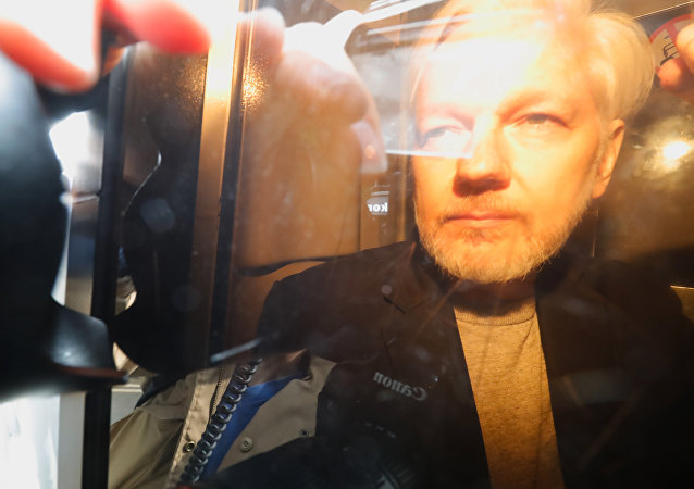WikiLeaks Founder Julian Assange Arrives at Court in London