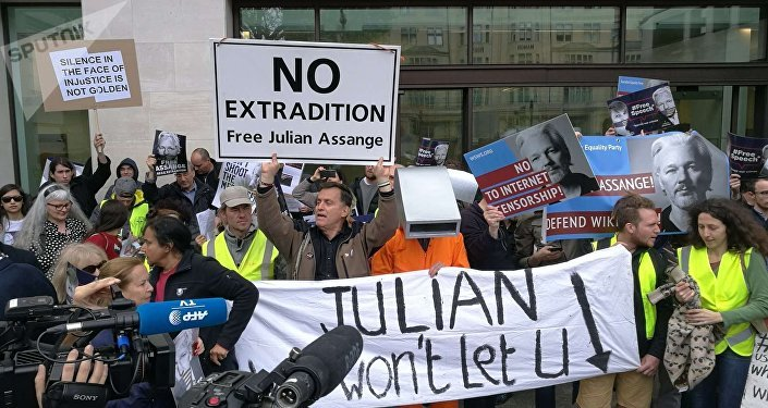 United Nations panel calls WikiLeaks founder's UK sentence excessive