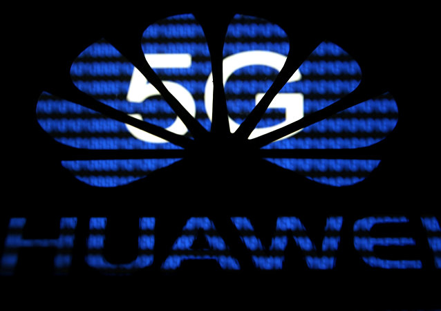 A 3-D printed Huawei logo is seen in front of displayed 5G words in this illustration taken February 12, 2019