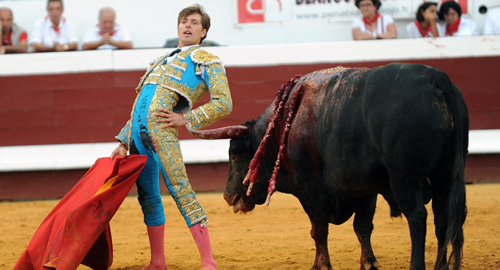 French matador Juan Leal reacts next to a Jandilla bull during the festival of Dax, southwestern France, on August 13,2015
