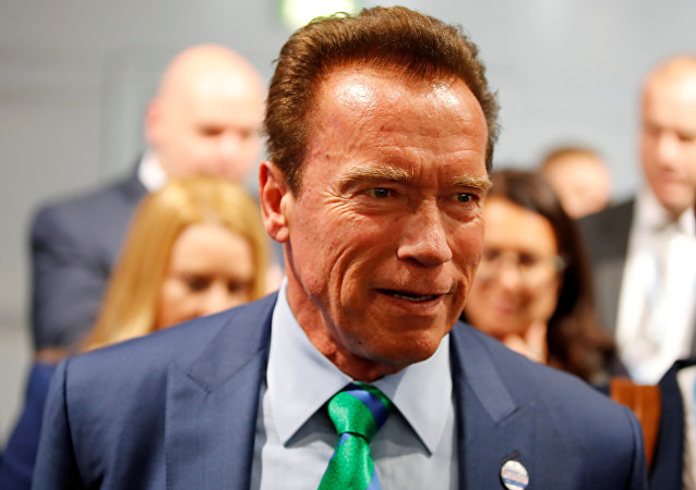 Former California governor and 'Mr. Universe' Arnold Schwarzenegger attends the COP23 UN Climate Change Conference 2017, hosted by Fiji but held in Bonn, Germany, November 12, 2017