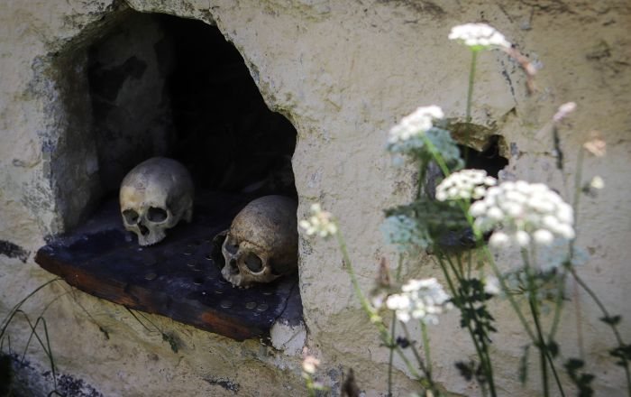 Skulls and coins in a tomb on the territory of the 'City of the Dead' in Russia's republic of North Ossetia and Alania