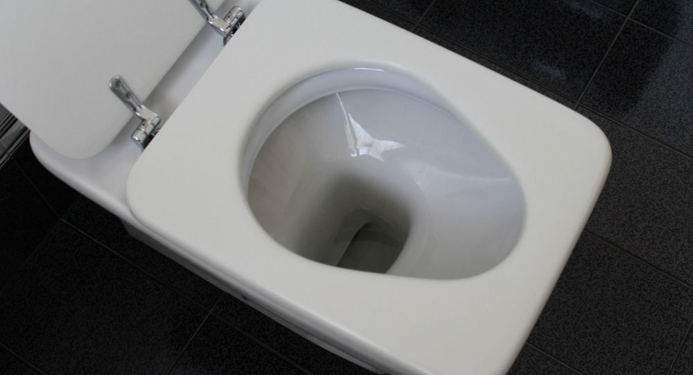 Israeli Man Reportedly Severs His Penis and Flushes It Down Toilet