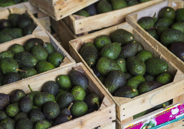 Crates of avocados from Michoacan available for sale at a market in Mexico City, Tuesday, Aug. 9, 2016. High avocado prices have fueled deforestation in Michoacan, where farmers cut down pines to clear the way for more avocado trees