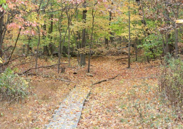 Grace Richardson Conservation Area