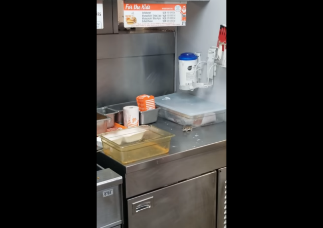Whataburger customers shocked as mouse jumps into deep fryer while customer attempts to capture and relocate it outside of the Texas-based restaurant.