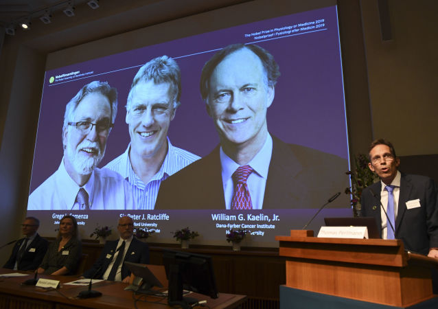 Thomas Perlmann (R), the Secretary of the Nobel Committee, speaks as the winners are announced of the 2019 Nobel Prize in Physiology or Medicine during a press conference at the Karolinska Institute in Stockholm, Sweden, on October 7, 2019. - William Kaelin and Gregg Semenza of the US and Peter Ratcliffe of Britain win the 2019 Nobel Medicine Prize.