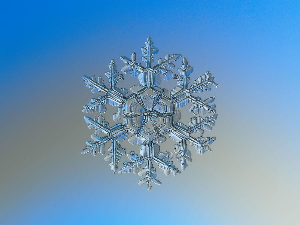 Astonishing Ice: Close-Up Photos Show the Amazing Beauty of Snowflakes