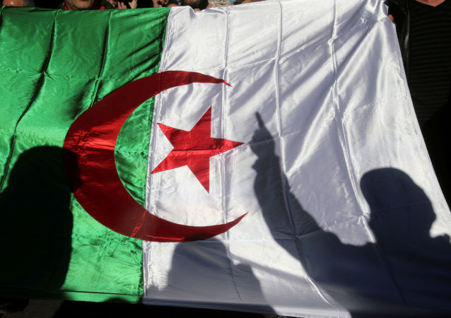 A demonstrator's shadow is cast on a national flag during an anti-government rally in Algiers, Algeria December 24, 2019.