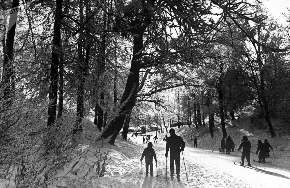 Nordic skiing in Izmailovsky Park in eastern Moscow
