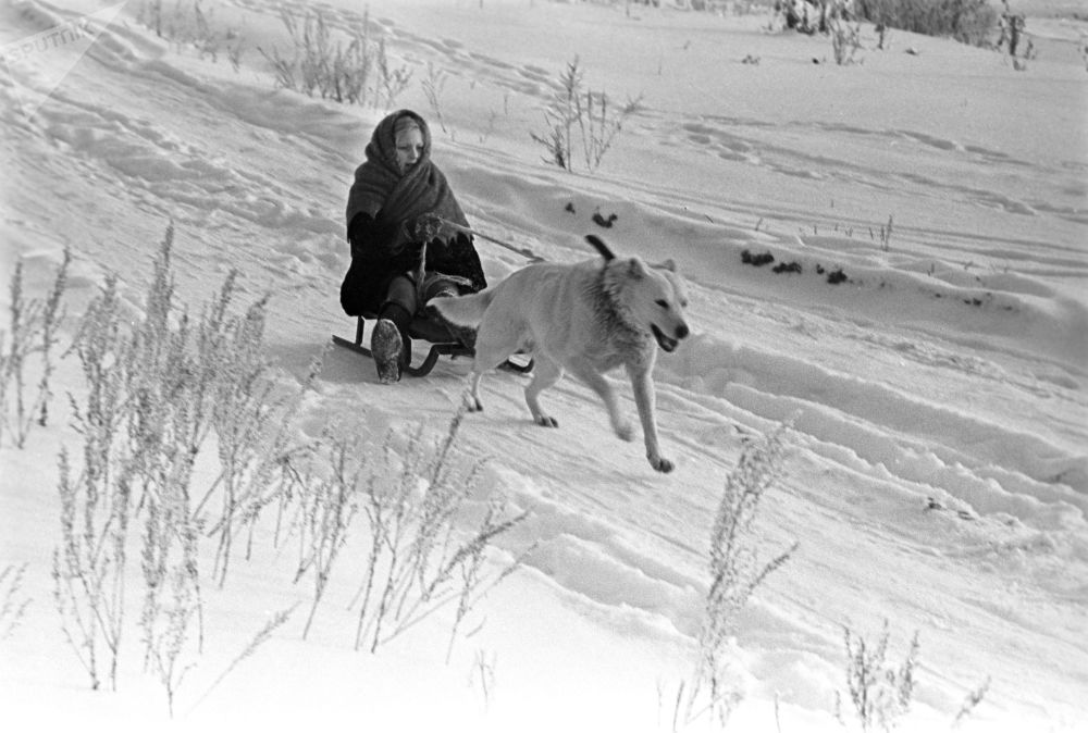 A girl enjoys a dog sleigh ride during winter holidays at her granny's place in Podolsk outside Moscow in 1971