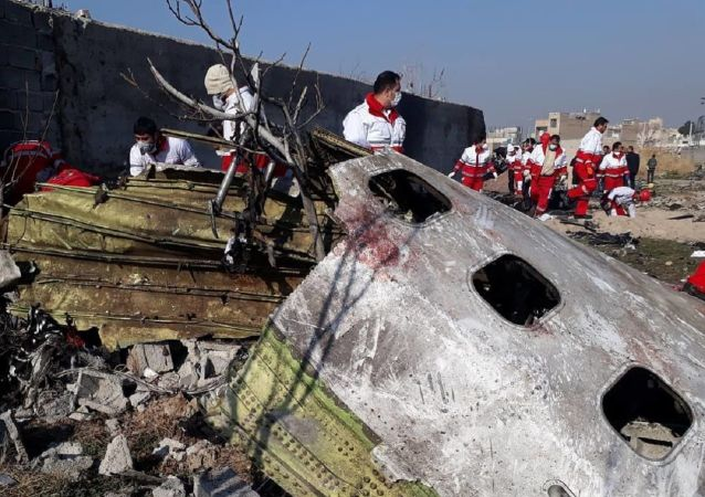 In this handout photo released by Iranian Red Crescent Society (IRCS), people work at the site of the Ukraine International Airlines' Boeing 737-800 passenger plane crash in the vicinity of the town of Parand, outside Tehran, Iran