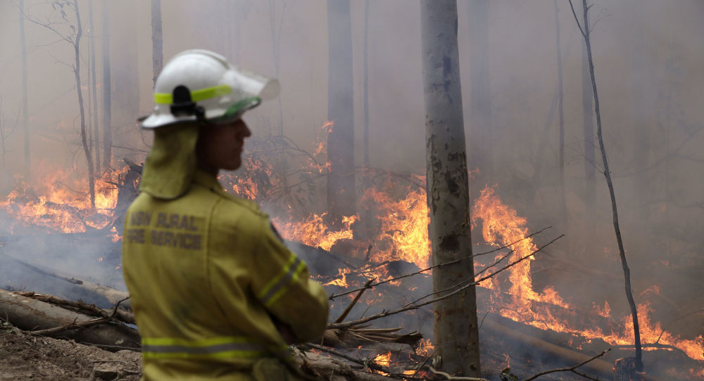 A firefighter keeps an eye on a controlled fire as they work at building a containment line at a wildfire near Bodalla, Australia, Sunday, Jan. 12, 2020