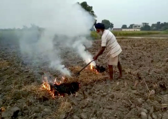 This Oct. 14, 2019 frame from video shows a farmer burning paddy stubble in a field in Amritsar, India, Wednesday, Oct. 16, 2019