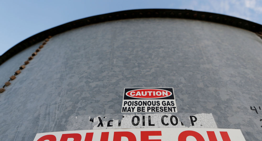 US, Russia Top Energy Officials Discuss Oil Prices, Agree on Dialogue Involving G20