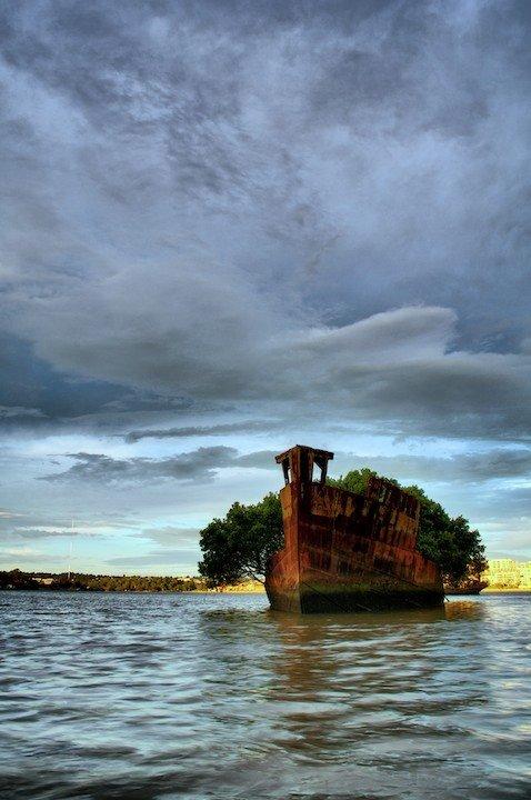 Homebush Bay, Sydney, New South Wales.