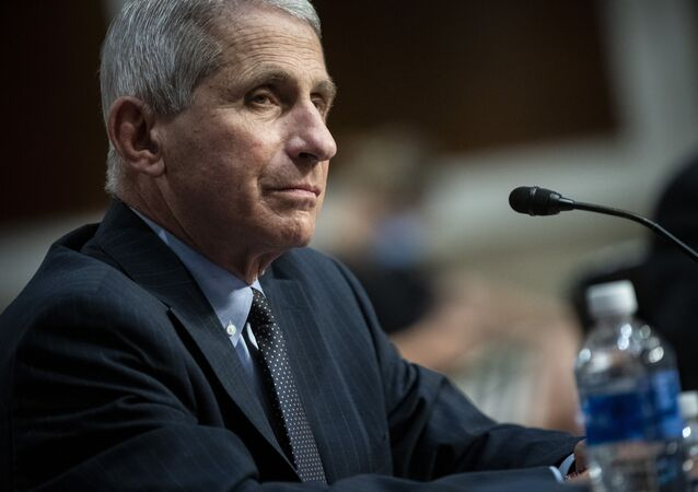 Director of the National Institute of Allergy and Infectious Diseases Dr. Anthony Fauci listens during a Senate Health, Education, Labor and Pensions Committee hearing on Capitol Hill in Washington, Tuesday, June 30, 2020