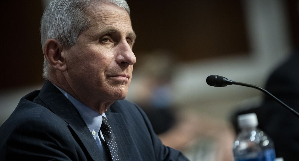 Director of the National Institute of Allergy and Infectious Diseases Dr. Anthony Fauci listens during a Senate Health, Education, Labor and Pensions Committee hearing on Capitol Hill in Washington, 30 June 2020