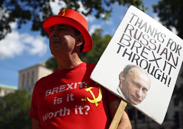 Anti-Brexit demonstrator Steve Bray holds a placard as he protests outside Downing Street in London, Britain, July 21, 2020