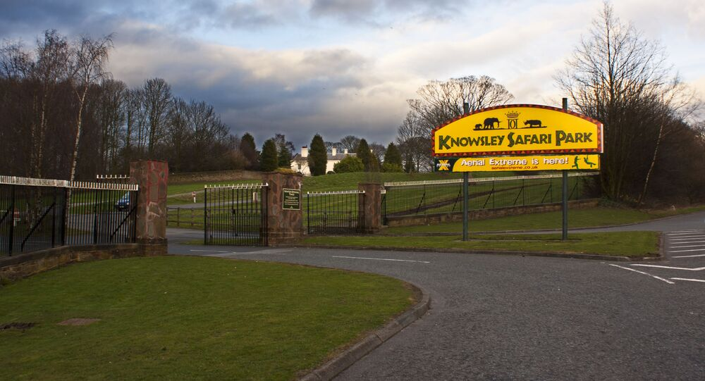 The entrance to Knowsley Safari Park