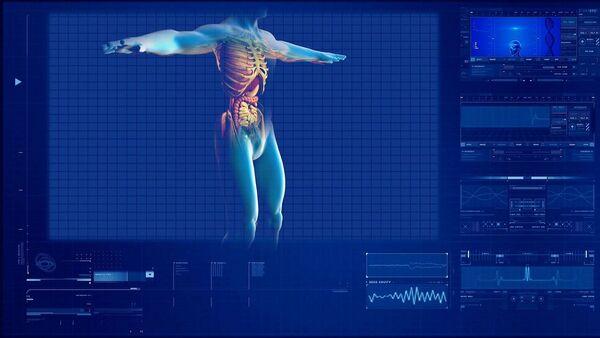 Structural Organization of the Human Body - Sputnik International