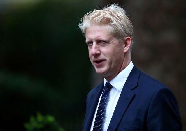 Jo Johnson, brother of Prime Minister Boris, is seen outside Downing Street in London