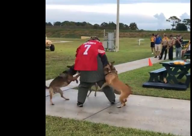 "Navy SEAL Museum in Fort Pierce used ""Colin Kaepernick stand-in for K-9 demonstration at fundraiser last year"
