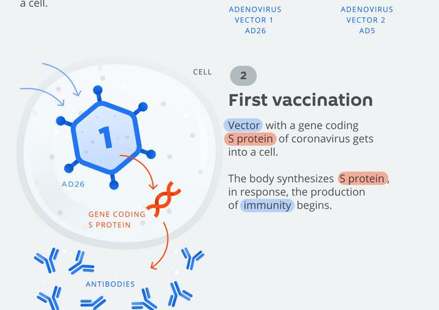 Russian two-vector vaccine against coronavirus