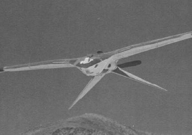 Nuclear Bird Drone