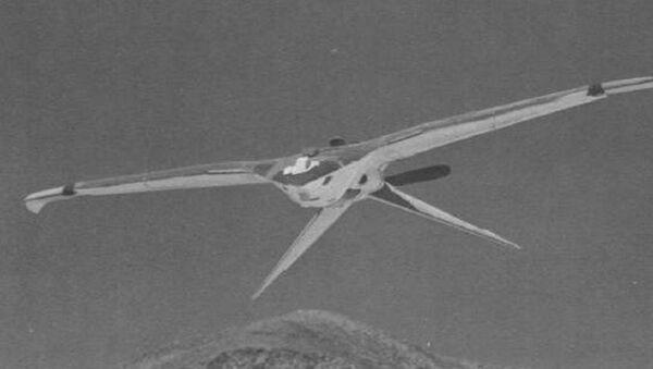 Nuclear Bird Drone - Sputnik International
