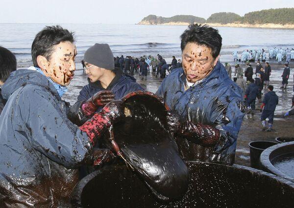Local residents use baskets to remove dense crude oil at Mallipo beach, South Korea on 9 December 2007 following a devastating oil spill. - Sputnik International