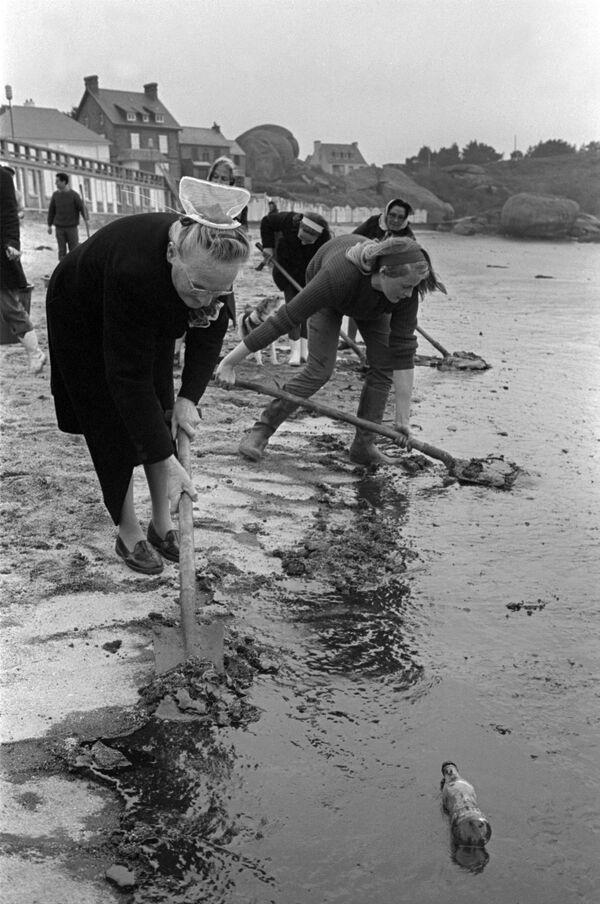Soldiers and volunteers clean up an oil slick on 14 April 1967 on the beach at Tregastel. - Sputnik International