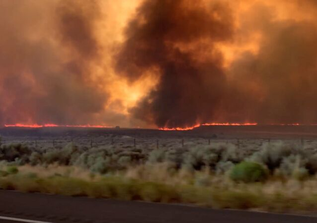 Fire and smoke from the Loyalton Fire is seen from a highway in Lassen County, California, U.S., August 15, 2020 in this screen grab obtained from a social media video. Dylyn Walker/via REUTERS THIS IMAGE HAS BEEN SUPPLIED BY A THIRD PARTY. MANDATORY CREDIT. NO RESALES. NO ARCHIVES.