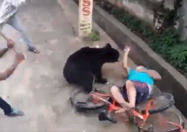 Bear attacks a man in bhawanipatna town today morning