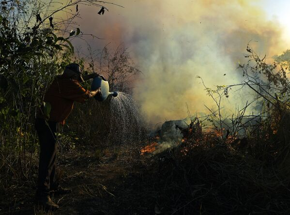 A farmer tries to pour water on an area close to an illegally lit fire in an Amazon rainforest reserve, south of Novo Progresso in Para state, Brazil, on 15 August 2020.  - Sputnik International
