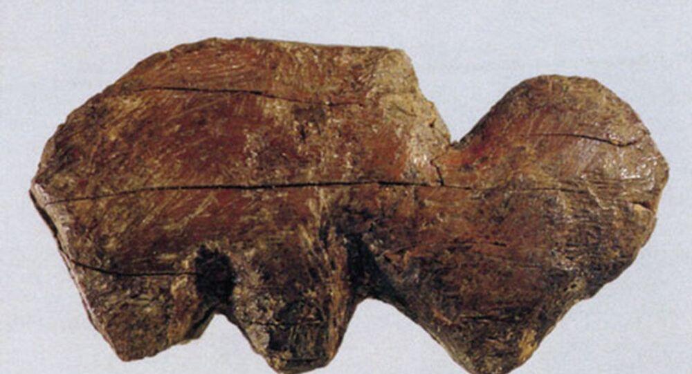 Mammoth tusk found in Siberia in 2020