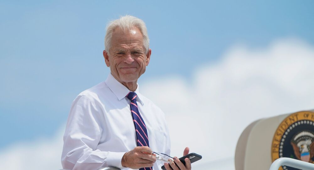 White House economic advisor Peter Navarro looks down from the steps of Air Force One as he waits to depart with U.S. President Donald Trump for travel to Ohio and New Jersey at Joint Base Andrews, Maryland, U.S., August 6, 2020.