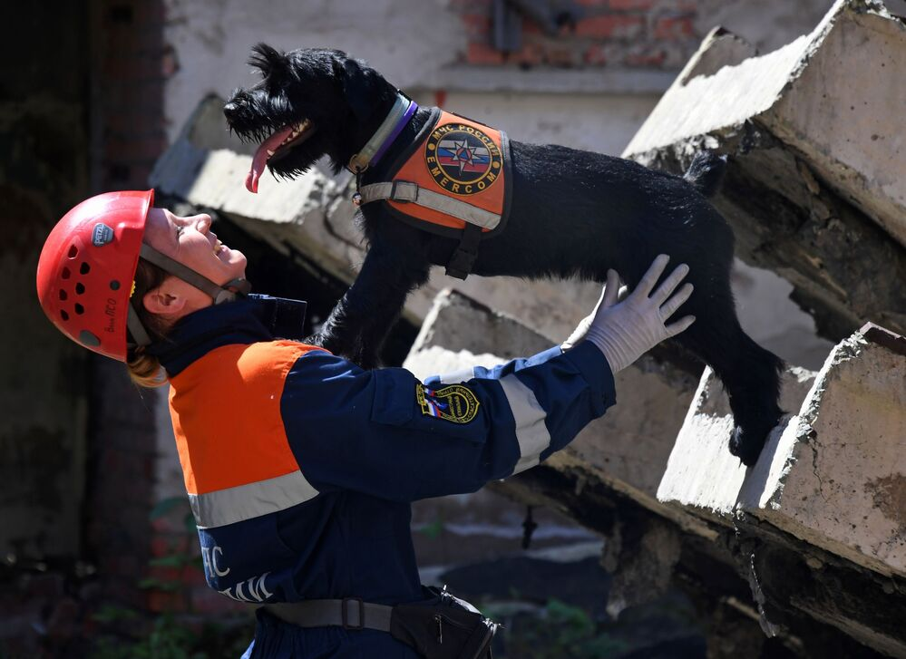 Dog handler at the Vladivostok search and rescue department of the Russian Emergency Situations Ministry, Yekaterina Vorontsova, with her mittelshnauzer Wolt during exercises.