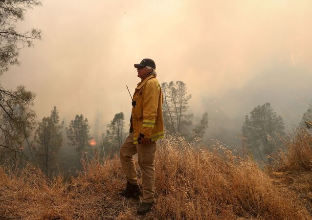 A firefighter monitors the LNU Lightning Complex Fire as it engulfs trees and brush in Lake County, California, U.S. August 23, 2020.