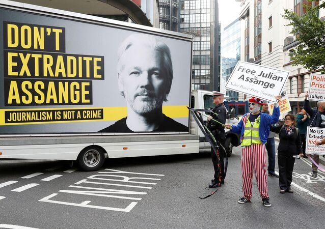 Supporters of WikiLeaks founder Julian Assange are seen outside the Old Bailey, the Central Criminal Court, ahead of a hearing to decide whether Assange should be extradited to the United States, in London, Britain, 7 September 2020. REUTERS/Peter Nicholls