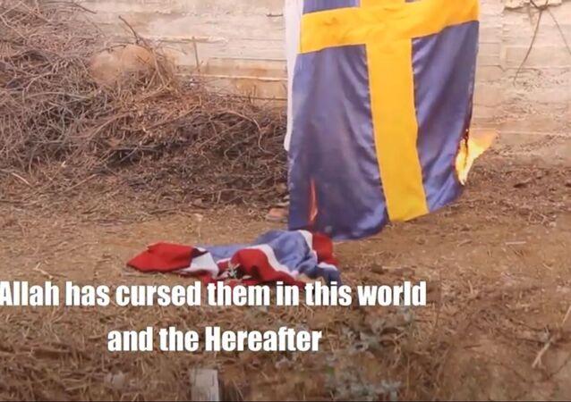 Swedish and Norwegian flags burning