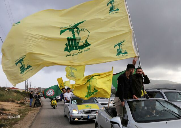 FILE PHOTO: A supporter of Lebanon's Hezbollah gestures as he holds a Hezbollah flag in Marjayoun