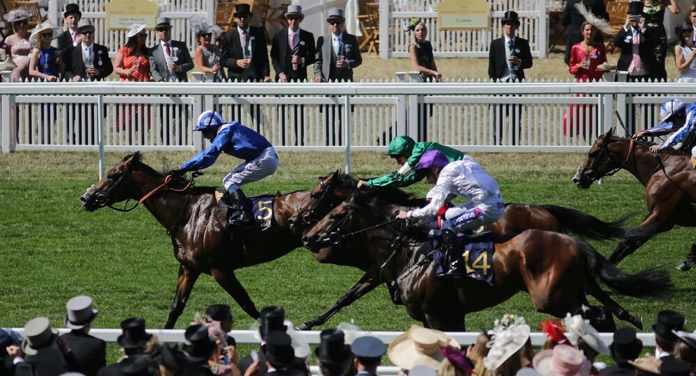 Horses race during the Commonwealth Cup on day four of the Royal Ascot horse racing meet, in Ascot, west of London, on June 22, 2018.