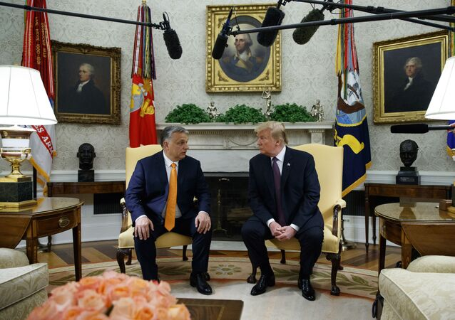 President Donald Trump meets with Hungarian Prime Minister Viktor Orbán in the Oval Office of the White House, Monday, May 13, 2019, in Washington