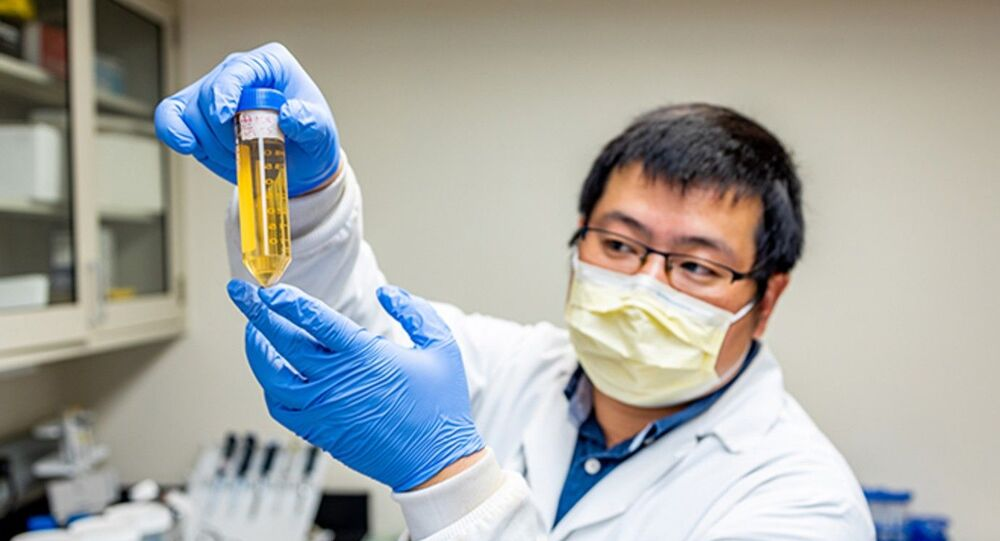 Wei Li, assistant director of Pitt's Center for Therapeutic Antibodies and co-lead author of the research, sifted through antibody components and found multiple therapeutic antibody candidates in record time.