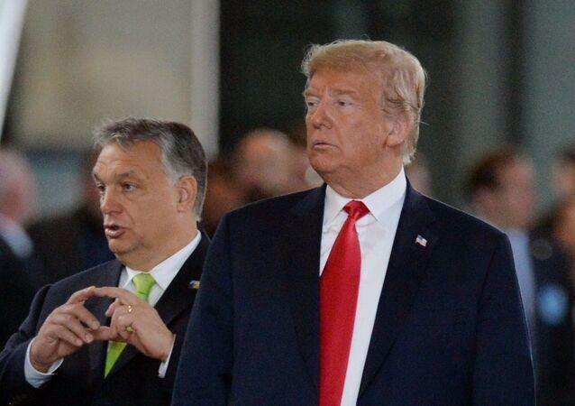 Prime Minister of Hungary Viktor Orban and US President Donald Trump (File)